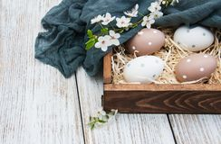 Easter eggs and spring  blossom Royalty Free Stock Photography