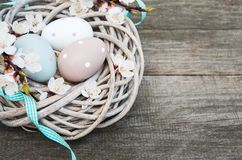 Easter eggs and spring  blossom. On a old wooden background Royalty Free Stock Photos