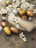 Easter eggs in spring decoration Royalty Free Stock Images