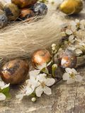 Easter eggs in spring decoration Royalty Free Stock Photo