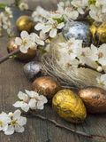 Easter eggs in spring decoration Stock Photos