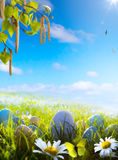 Easter eggs on spring field Royalty Free Stock Image