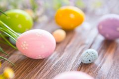 Easter eggs and spring flowers. Royalty Free Stock Image