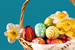 Easter eggs and  spring flowers Royalty Free Stock Images