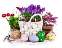 Easter eggs with spring flowers in basket Stock Images