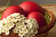 Easter eggs with spring flowers. Characteristic decoration of Easter Holidays Royalty Free Stock Images