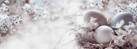 Easter eggs with spring flowers royalty free stock photography