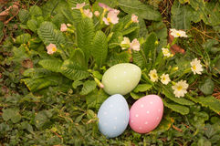 Easter eggs on spring flowers field Royalty Free Stock Images