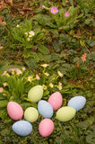 Easter eggs on spring flowers field Royalty Free Stock Photos