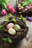 Easter eggs and spring flowers Stock Image
