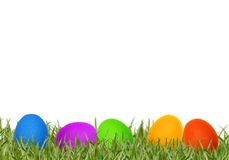 Easter eggs in spring grass Royalty Free Stock Photography