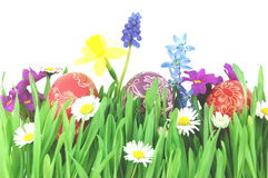 Easter eggs on a spring meadow Royalty Free Stock Photo