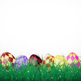 Easter eggs with squares in grass on a white shining background. With flowers.eps10 Stock Photography