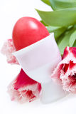 Easter eggs in stand and tulips on white. Background Royalty Free Stock Photos