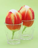 Easter eggs - Stock photos Royalty Free Stock Photo