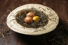 Easter eggs in straw Stock Images
