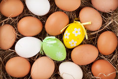 Easter eggs in straw nest Royalty Free Stock Photos