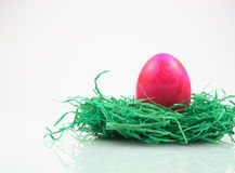 Easter eggs on synthetic turf Stock Image