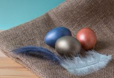 Easter eggs, colored an onions peel, decorated by feathers, on burlap on a wooden background stock images