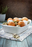 Easter eggs with thyme. Eggs in a white bowl on a turquoise vintage surface Royalty Free Stock Photography