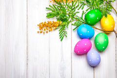 Easter eggs top view branch mimosa spring Royalty Free Stock Image