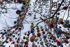 Easter eggs on a tree. Shot from under stock image