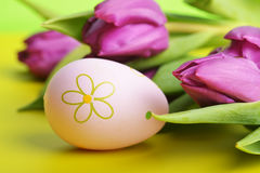 Easter eggs  and tulip Stock Image