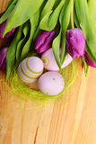 Easter eggs  and tulip Royalty Free Stock Photos