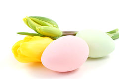 Easter eggs and tulip Stock Photos