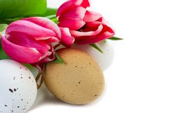 Easter eggs and Tulip royalty free stock photography