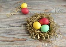 easter eggs tulips Στοκ εικόνες με δικαίωμα ελεύθερης χρήσης