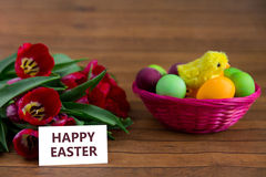 Easter eggs, tulips and card with copyspace royalty free stock photography