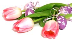 easter eggs and tulips isolated on white Royalty Free Stock Photos