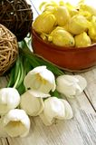 easter eggs and tulips on old wooden Royalty Free Stock Photography