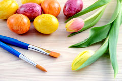 Easter eggs with tulips and paintbrush Stock Image