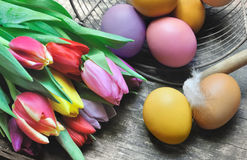 Easter eggs and tulips Stock Images