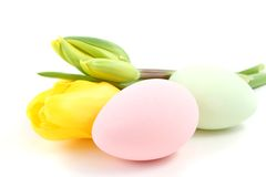 Easter eggs with tulips Stock Photography