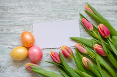 Easter eggs and tulips with a white card on the vintage wooden background Royalty Free Stock Images