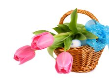 Easter eggs with tulips in wicker basket and blue loop Stock Images