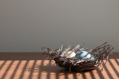 Easter eggs in twig nest Royalty Free Stock Images