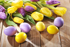 Easter eggs. Violet and yellow easter eggs with tulips  on old wooden board Stock Photo