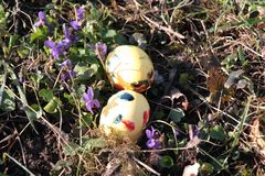 Easter Eggs and Violets on a Meadow Royalty Free Stock Photography