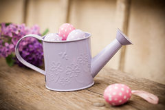 Easter eggs in watering can Royalty Free Stock Images