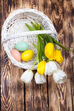 Easter Eggs in a white basket with colorful tulips Royalty Free Stock Images