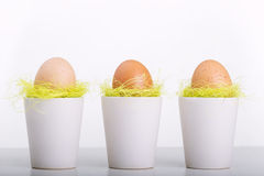 Easter eggs in white cups. On grey table Stock Image