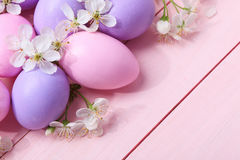 Easter eggs and white flowers Royalty Free Stock Photos