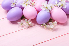 Easter eggs and white flowers. Royalty Free Stock Photography