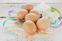 Easter eggs and white orchids Royalty Free Stock Photos