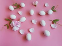 Easter Eggs white  with roses petal on pink background stock photos