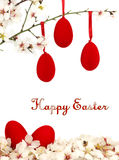 Easter eggs and white spring flowers Stock Photography